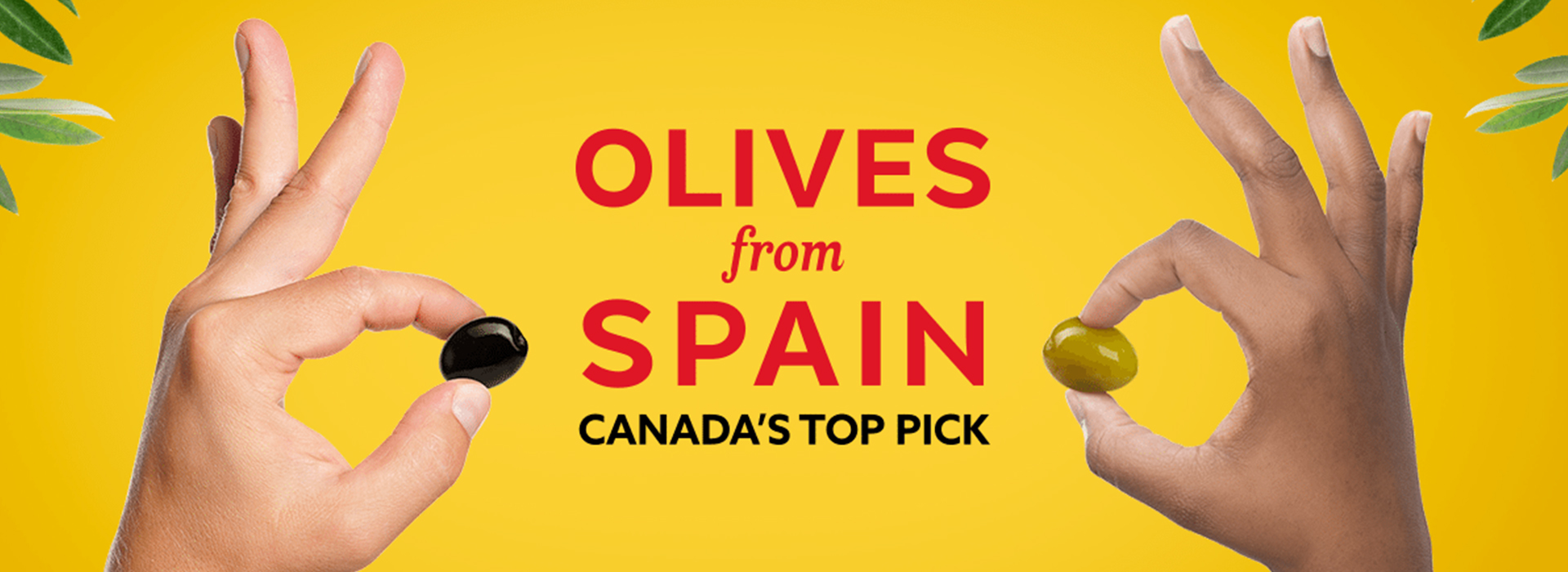 Key visual : Olives from Spain